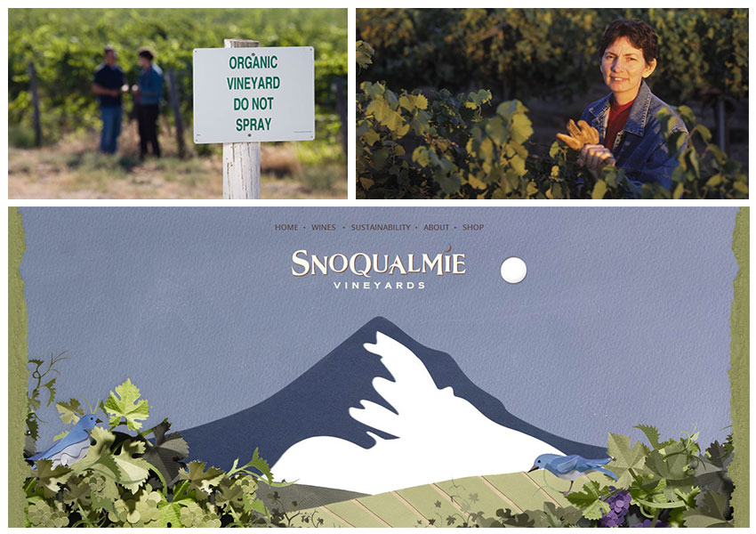 Snoqualmie Local Green Business Collage