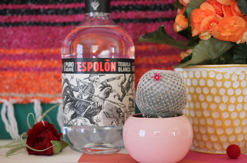 Cinco De Mayo party inspiration from Greenvelope + Dandy & Fine Parties