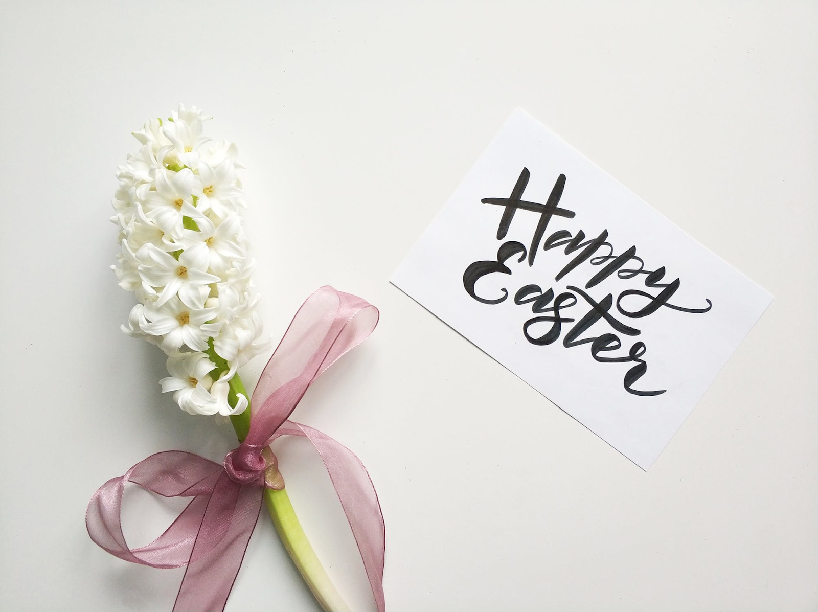 A spring flower with a ribbon and happy Easter card